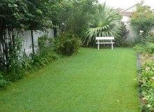 Kwikfynd Lawn and Turf ballengarra